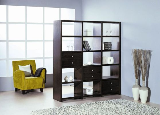 Modern wenge room divider / display