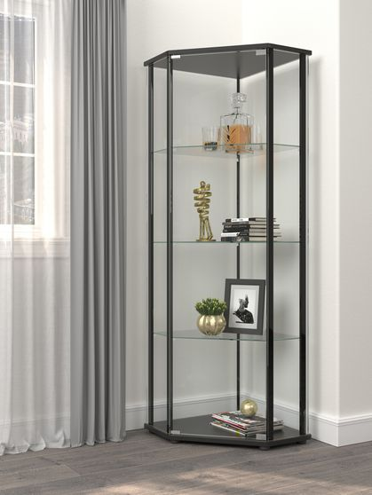 Corner curio / display cabinet with glass sides / shelves