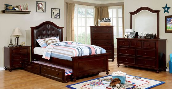 Traditional style dark walnut finish youth bedroom