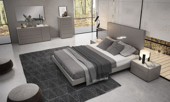 Modern gray finish profile bed in minimalistic style