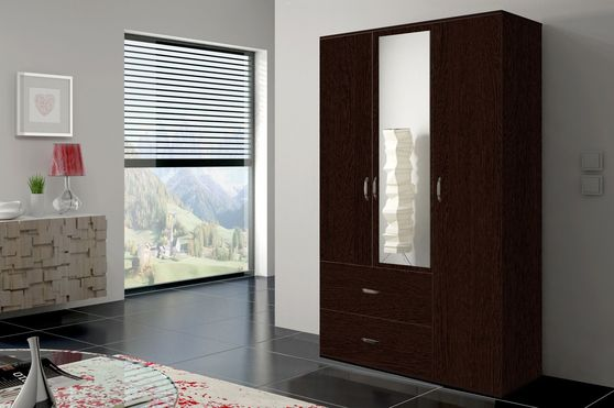 Versatile closet/wardrobe in wenge finish