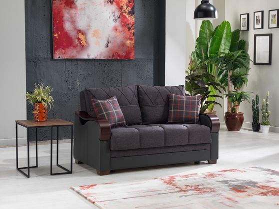 Drastic contemporary two-toned storage loveseat