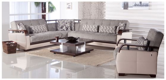 Modern sleeper sofa sectional w/ storage